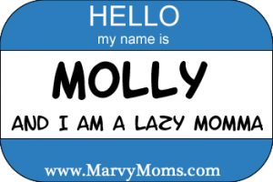 Hello, My Name is Molly and I am a lazy Momma.