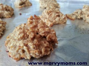 Yummy Yucky Delicious Disgusting Banana Oatmeal Peanut Butter Cookies